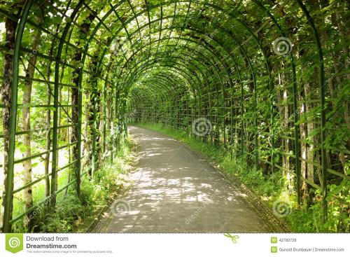 8293e0ee6154f47b3c02152a8fb8435f.jpg 庭院风水——植物也很有讲究 装修风水